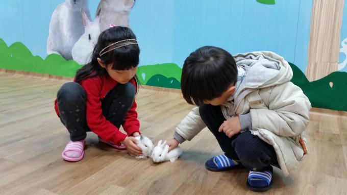토끼와 놀면 시간이 너무 짧아요